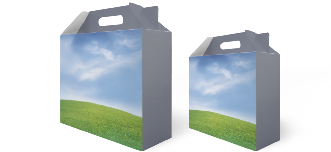 handy carry handle boxes promotional design printing